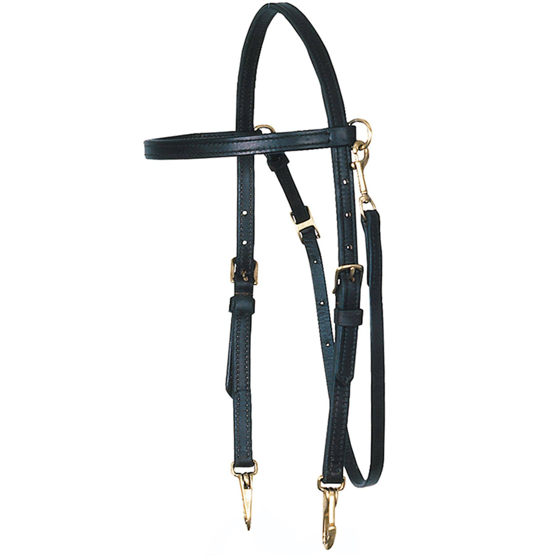 Billy Royal® Arabian Training Bridle