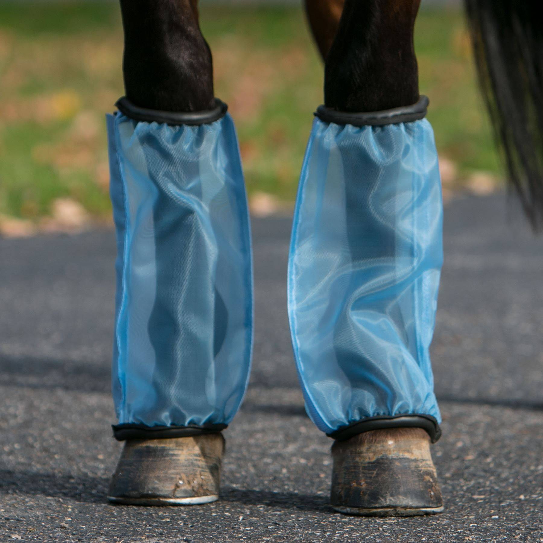 Mosquito Mesh Fly Boots In Mosquito Mesh Fly Sheets At