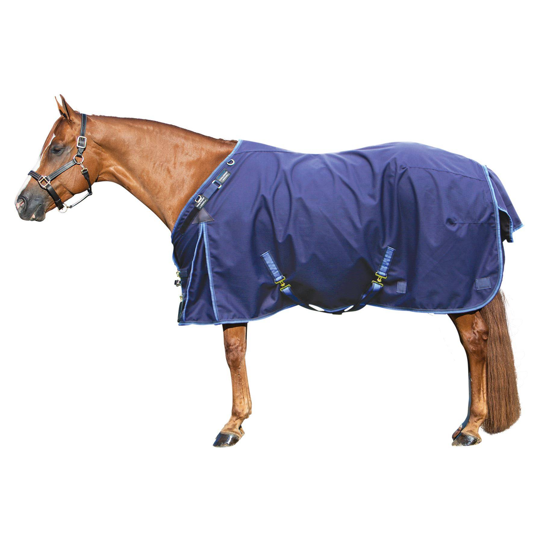 ARMORFlex® Challenger V-Free® Fit Heavyweight Turnout Blanket - Surcingle