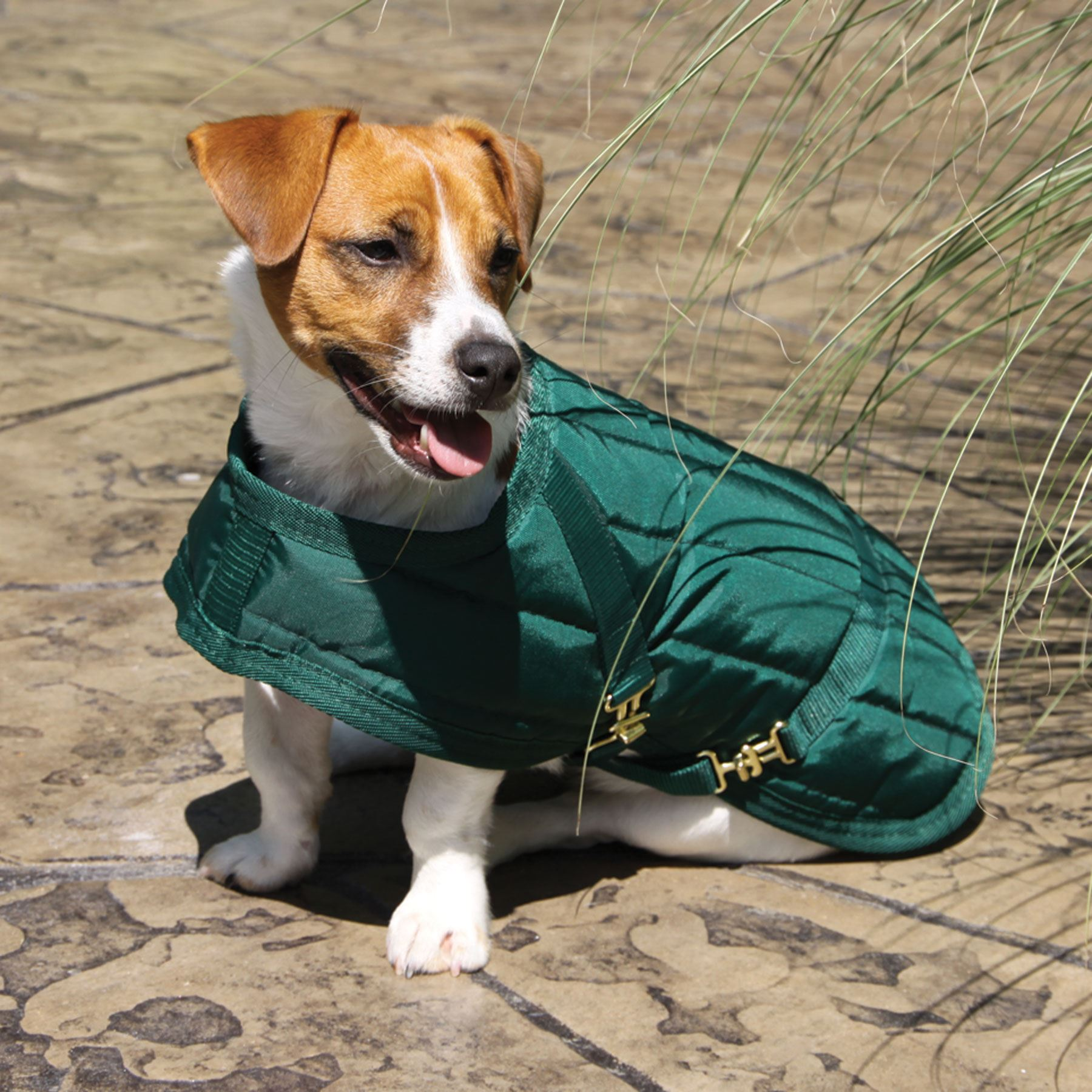 Winter Horse Blankets >> Dura-Tech® Channel Quilted Dog Coat in Dog Coats & Jackets at Schneider Saddlery