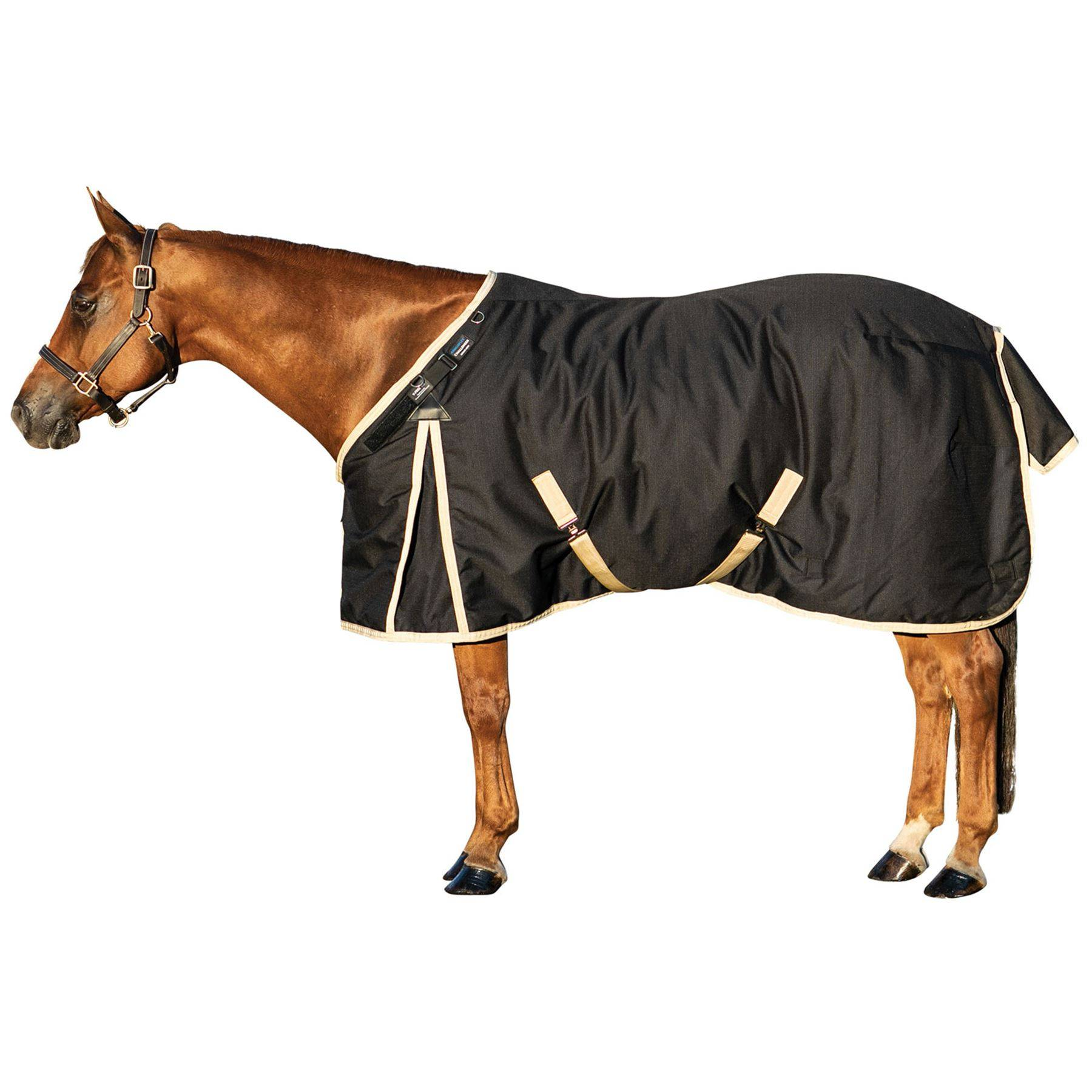 ARMORFlex® Challenger V-Free® Fit Closed Front Medium Weight Turnout Blanket - Surcingle