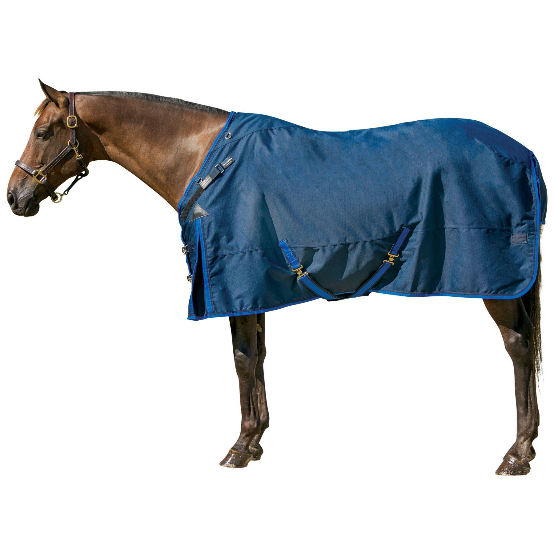 StormShield® VTEK® Evergreen Turnout Blanket