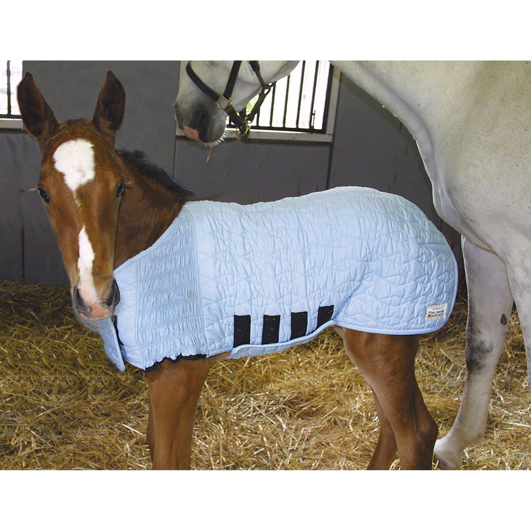 ultraflex foal saver in horse blankets and sheets at schneider