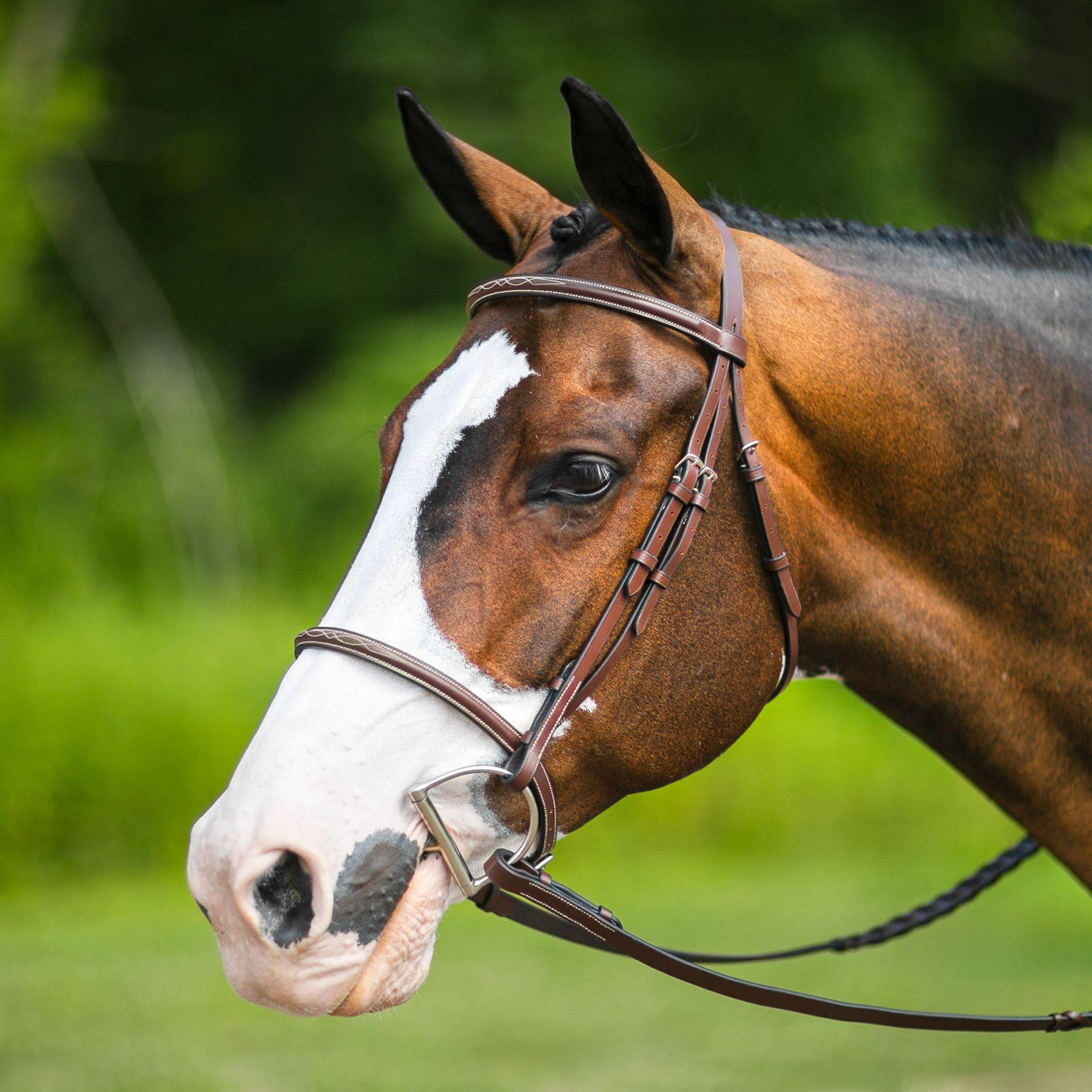 Pinnacle Raised Fancy Stitched Bridle