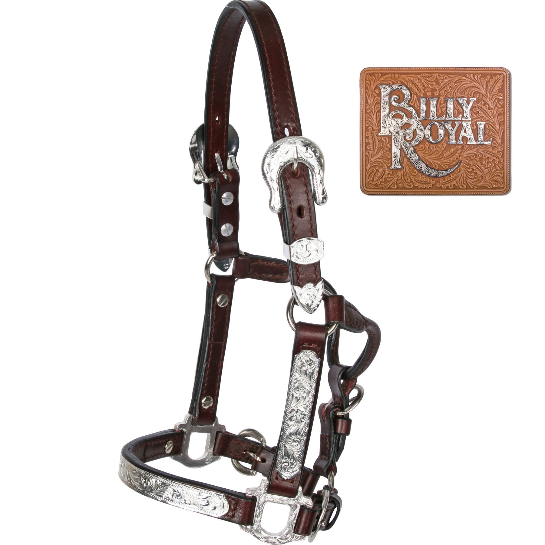 Billy Royal 174 Fitted Ii Mini Halter In Miniature Show