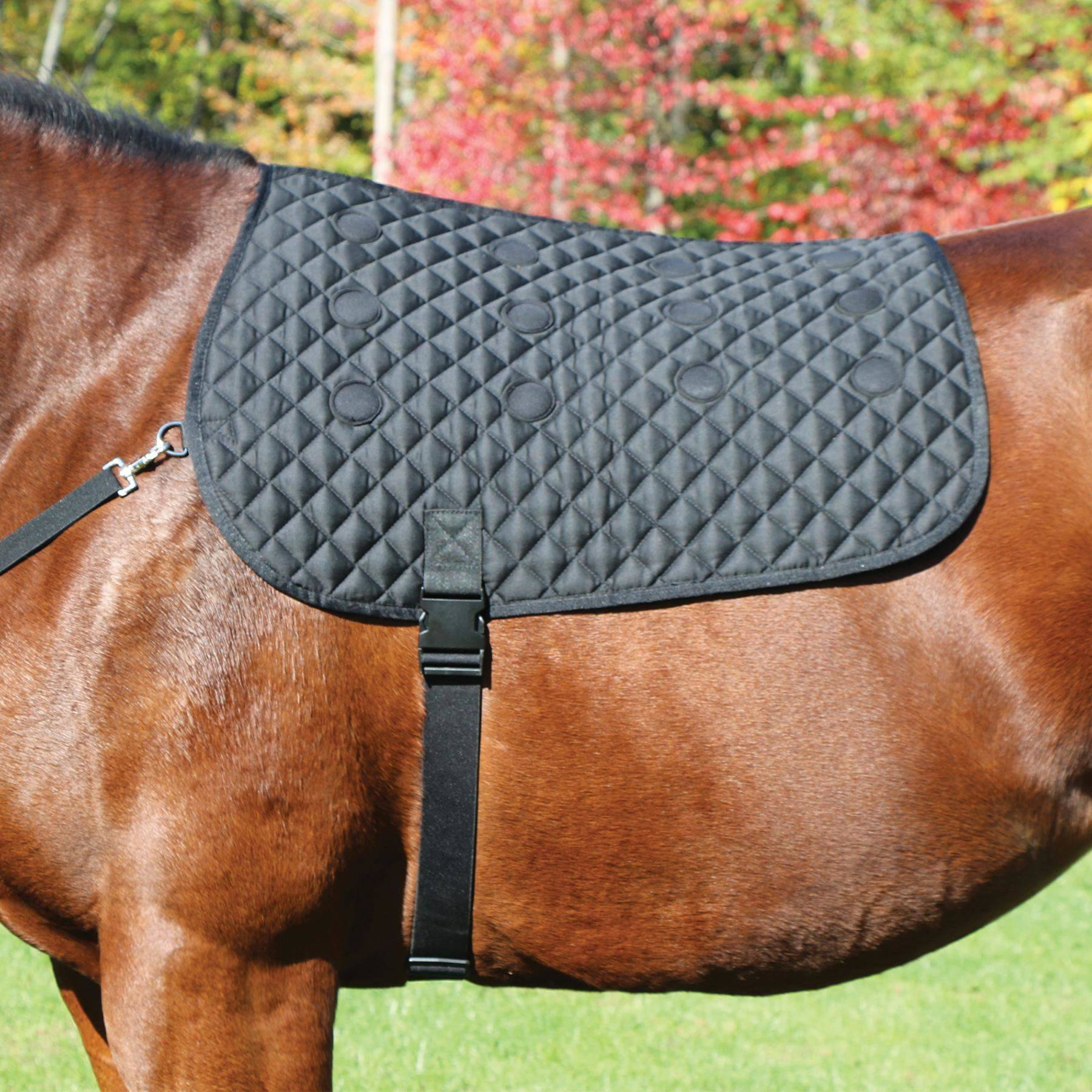 Dura Tech 174 Magnetic Therapy Back Pad In Magnetic At