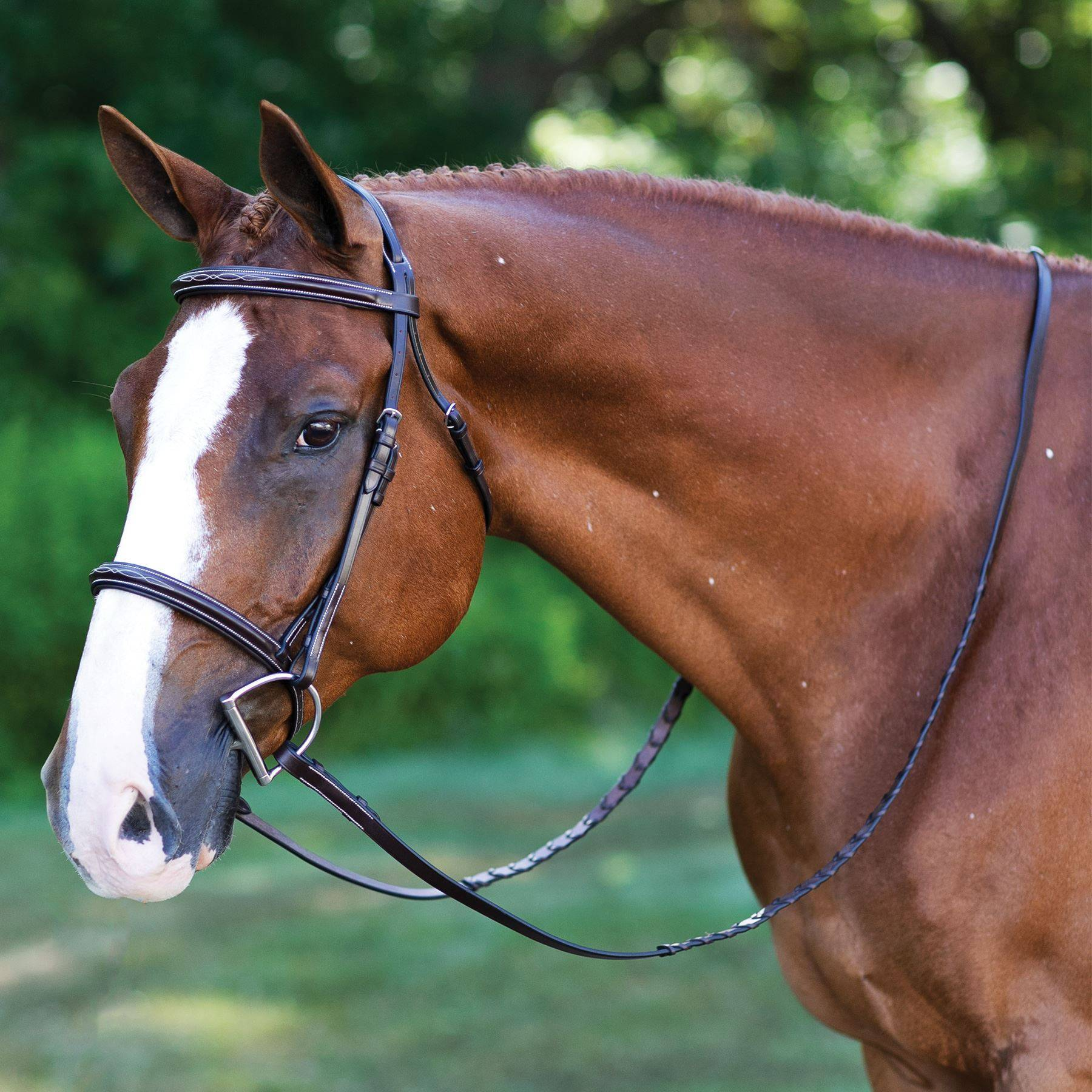 Joseph Sterling® Comfort Plus Hunter Bridle