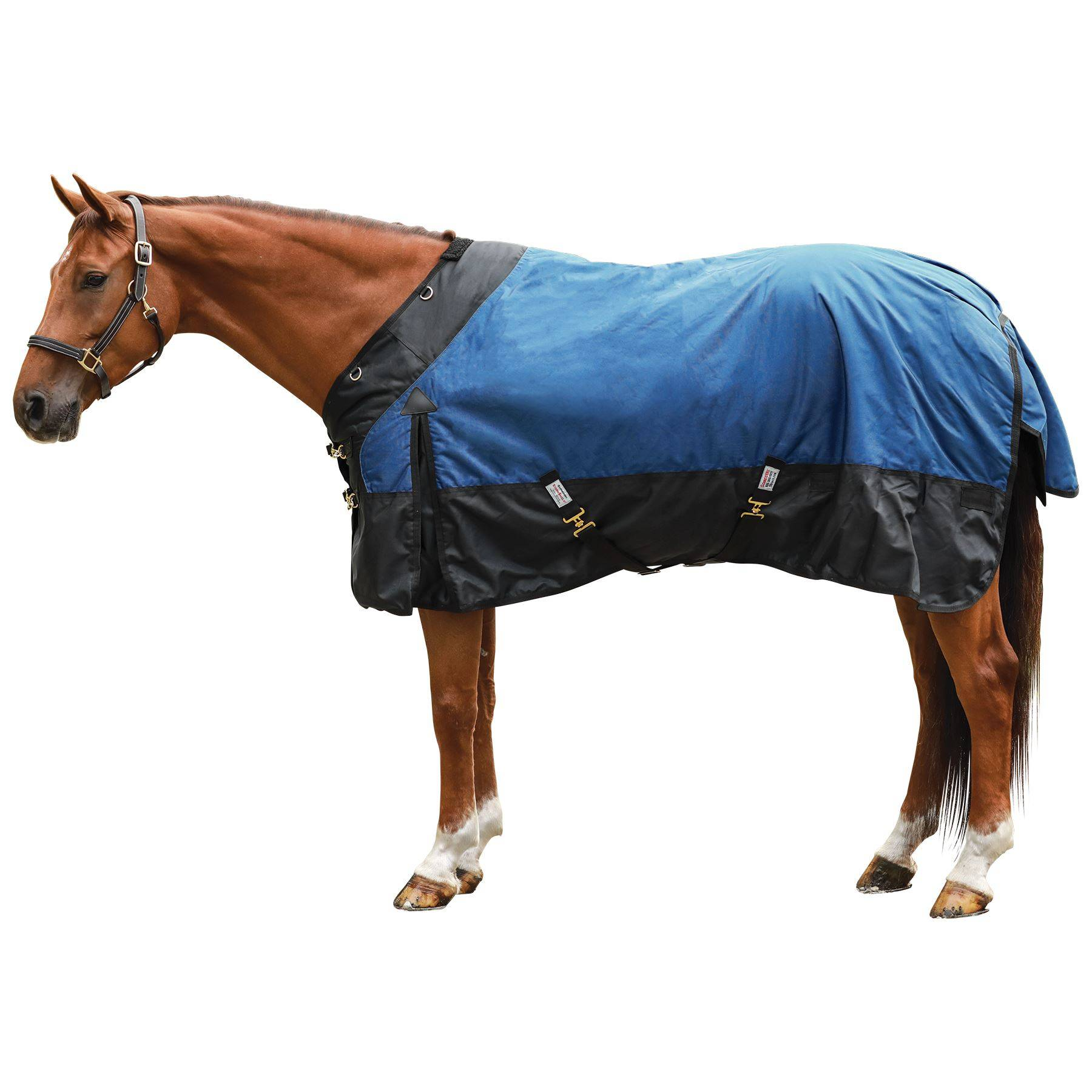StormShield® Contour Collar Euro Extreme Turnout Sheet