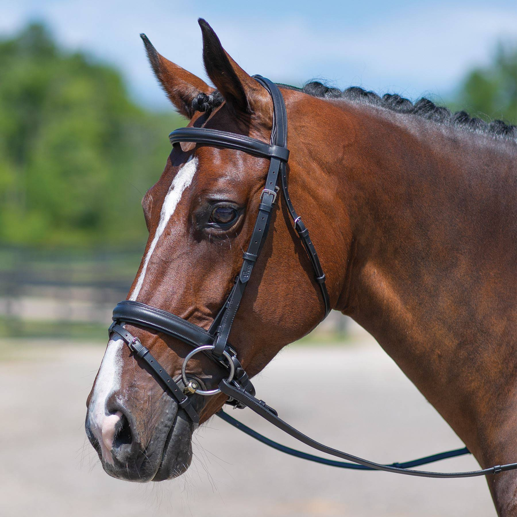 Premier® Dressage Snaffle Bridle with Crank