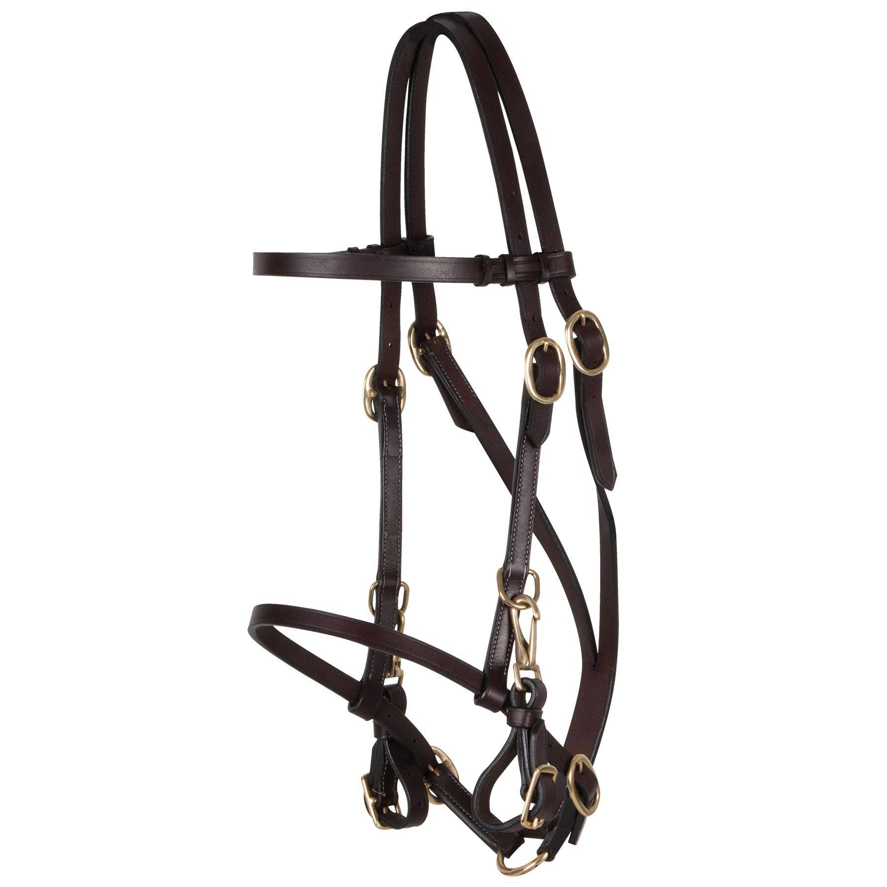 Trail Bridle Halter Combo