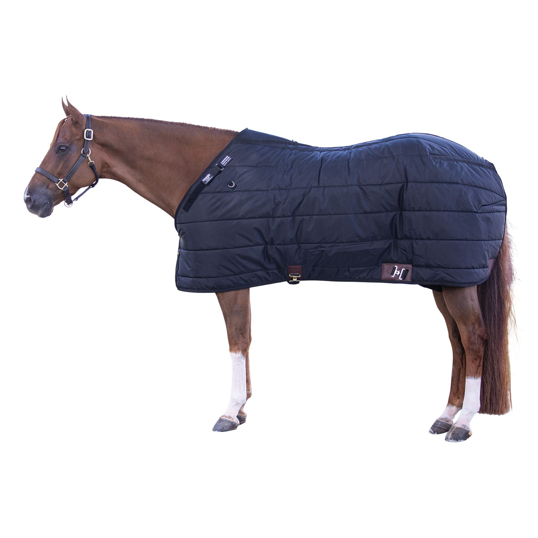 Adjusta-Fit® Dura-Nylon® V-Free® Westcoast Leg Strap Stable Blanket - Midweight