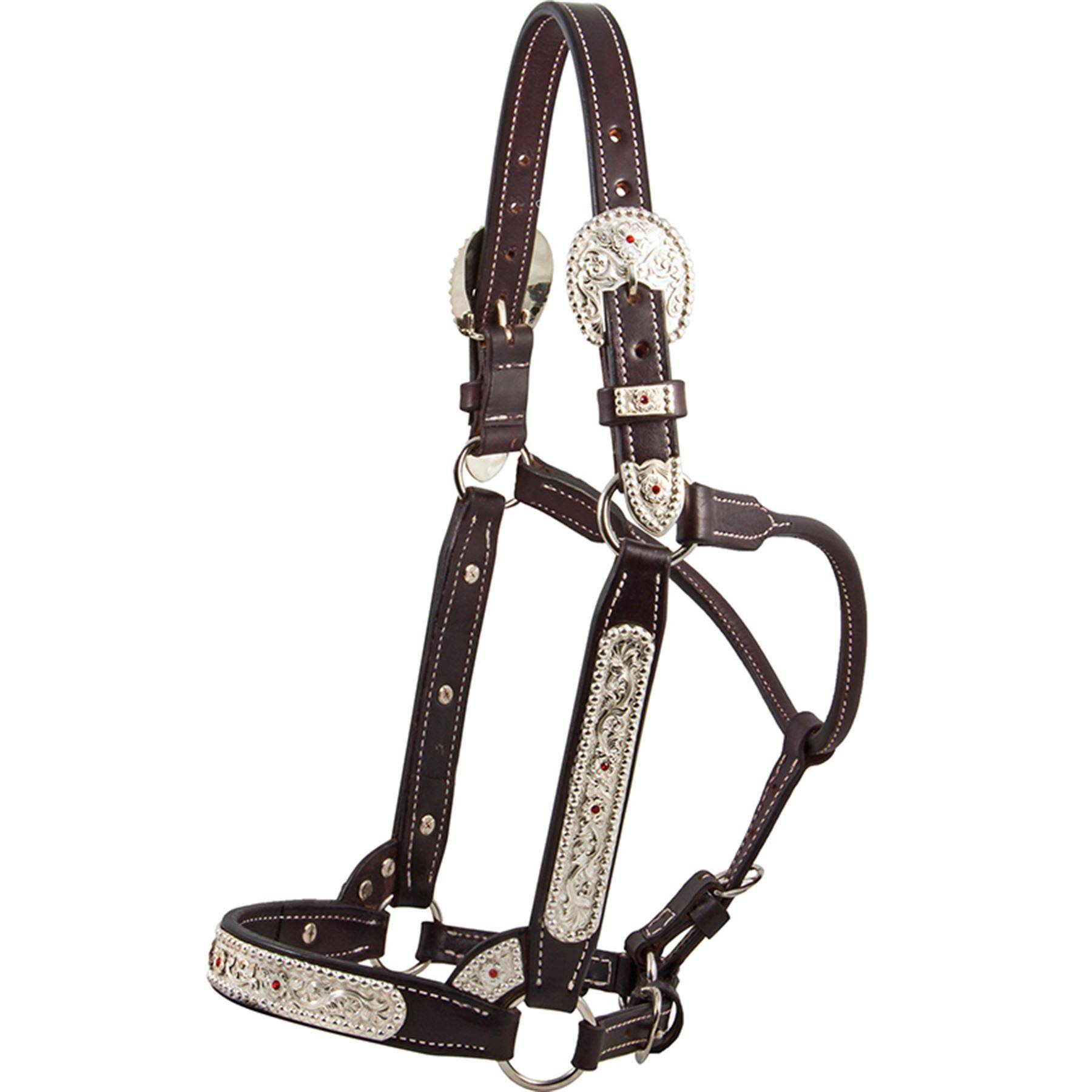 Billy Royal® SSO Futurity Classic Show Halter