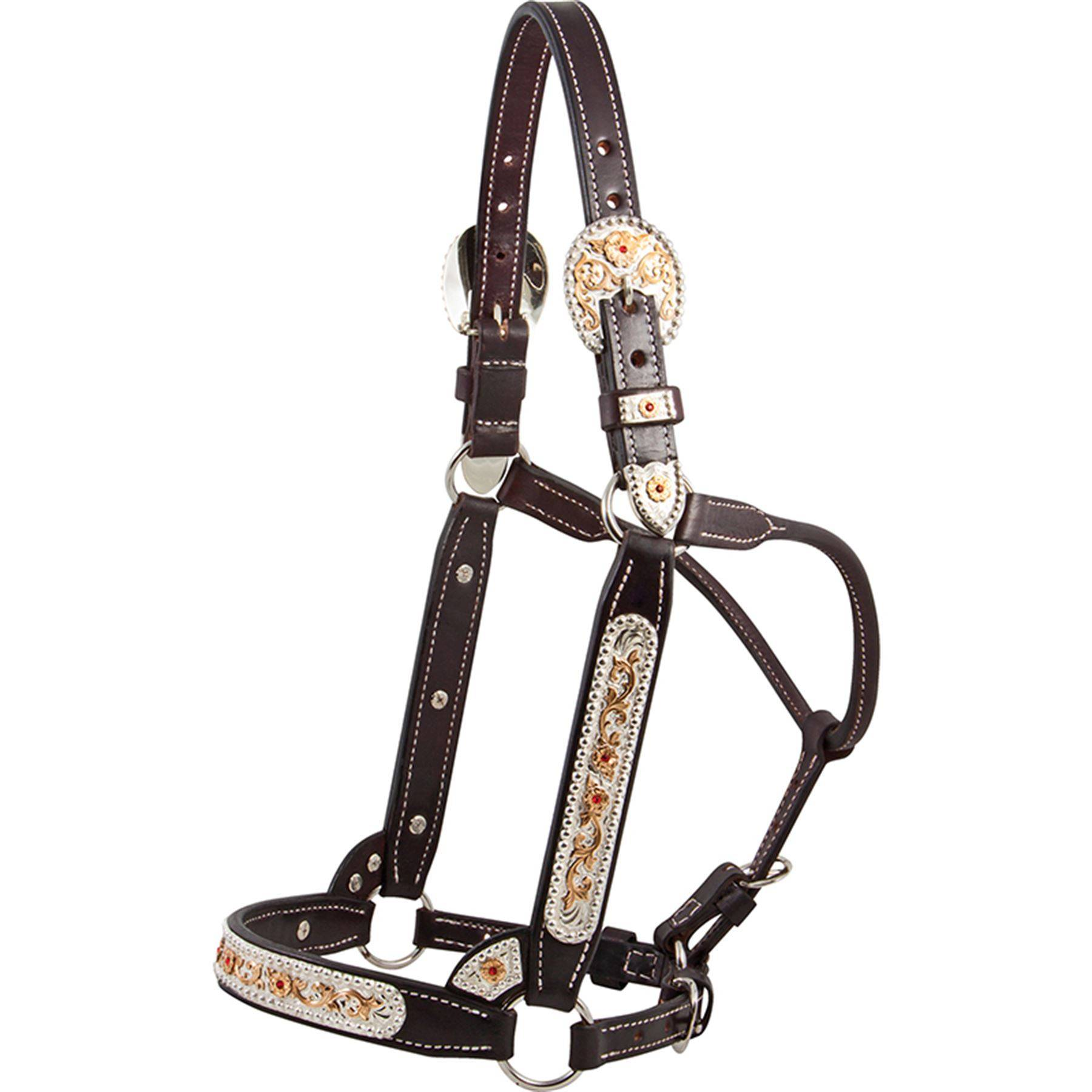 Billy Royal® SSO Winning Edge Show Halter