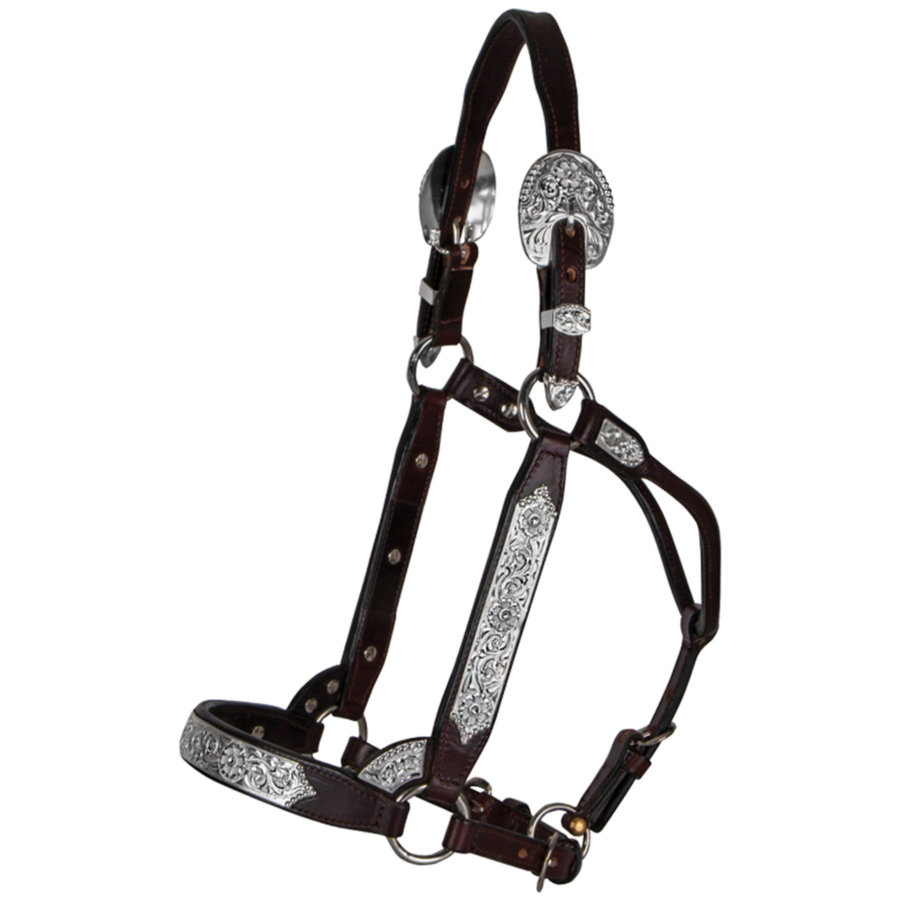 Billy Royal® Sonoma Pro Show Halter
