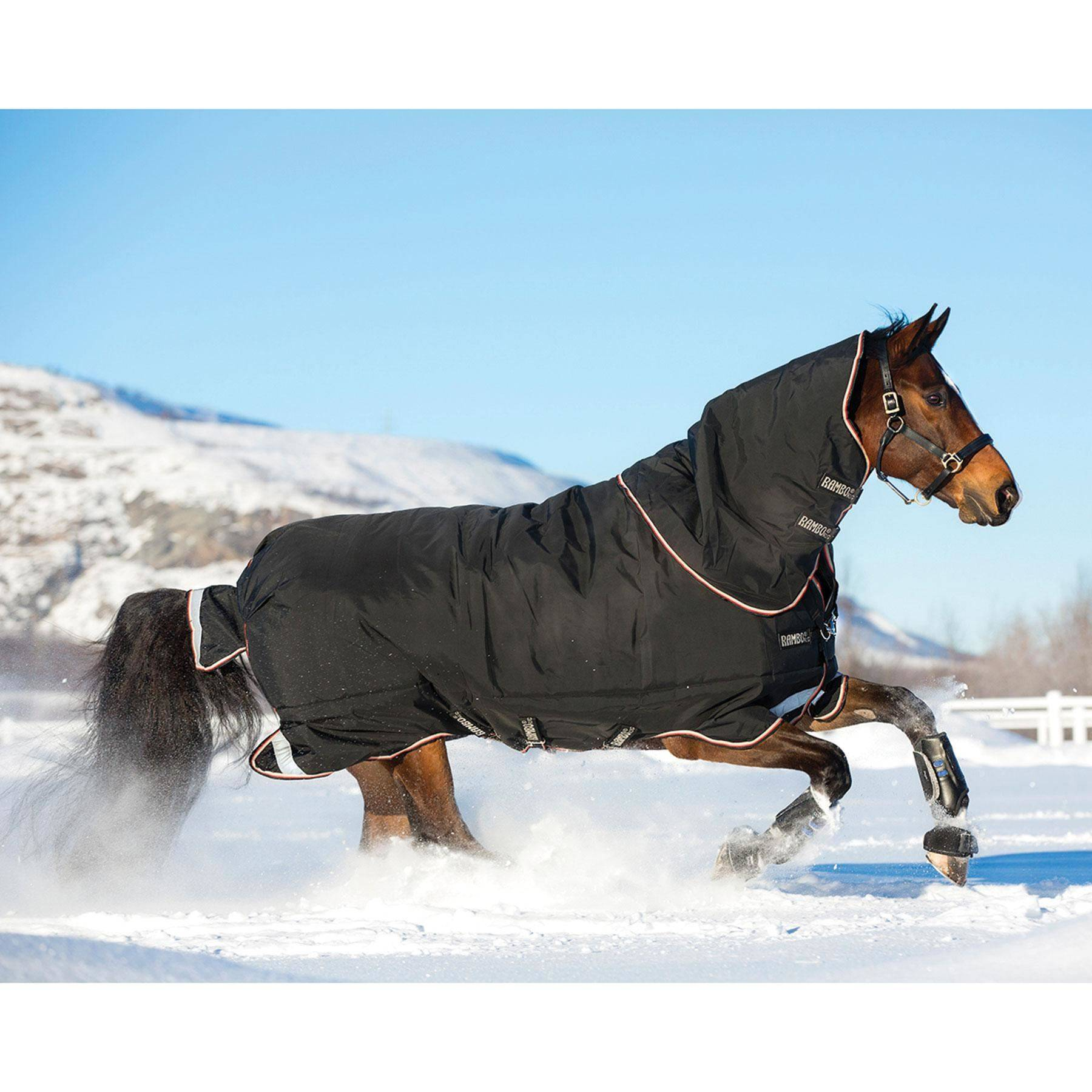 Rambo® Supreme Heavyweight Turnout Blanket