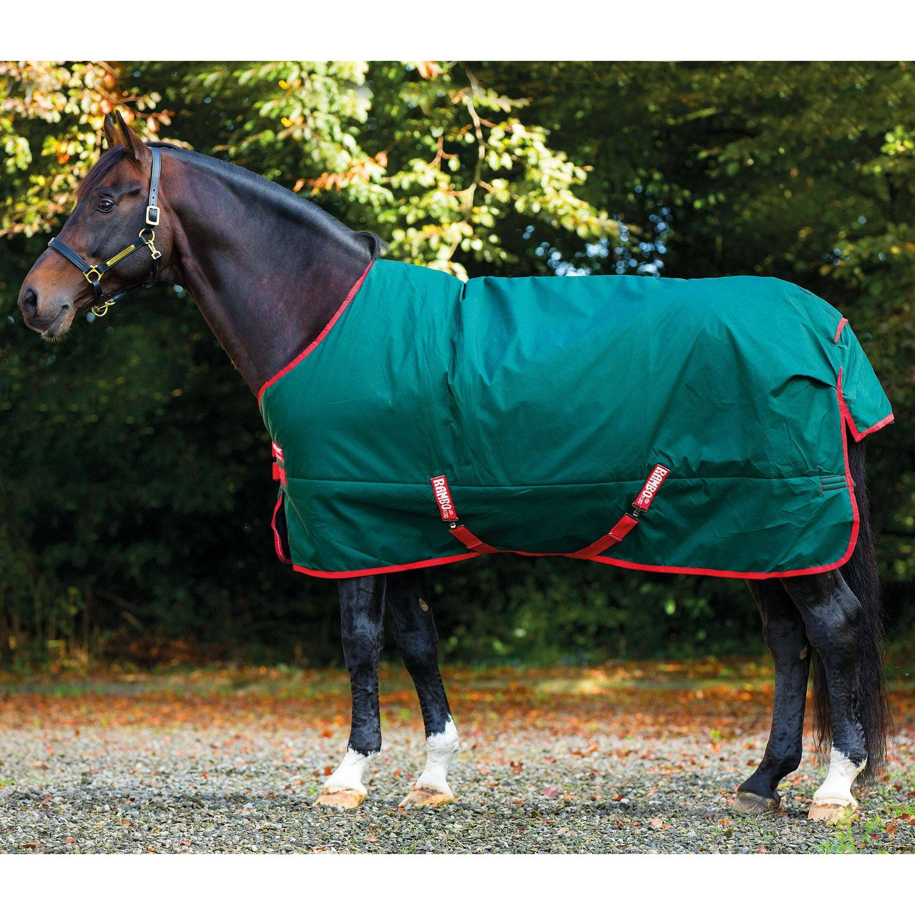 rambo original lite turnout sheet in rambo amigo turnout sheets at schneider saddlery. Black Bedroom Furniture Sets. Home Design Ideas