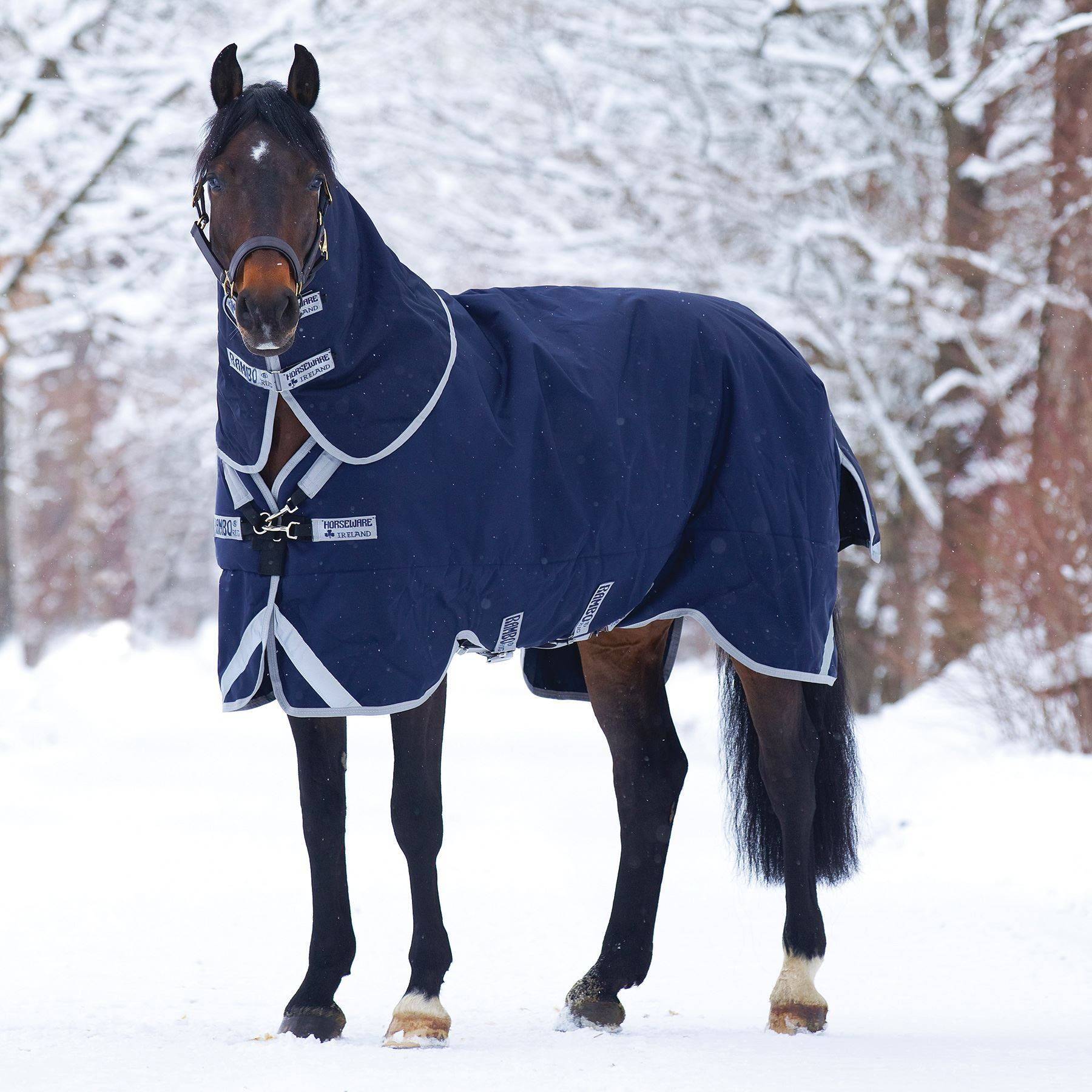 Rambo® Original with Leg Arches™ Medium Weight Turnout Blanket