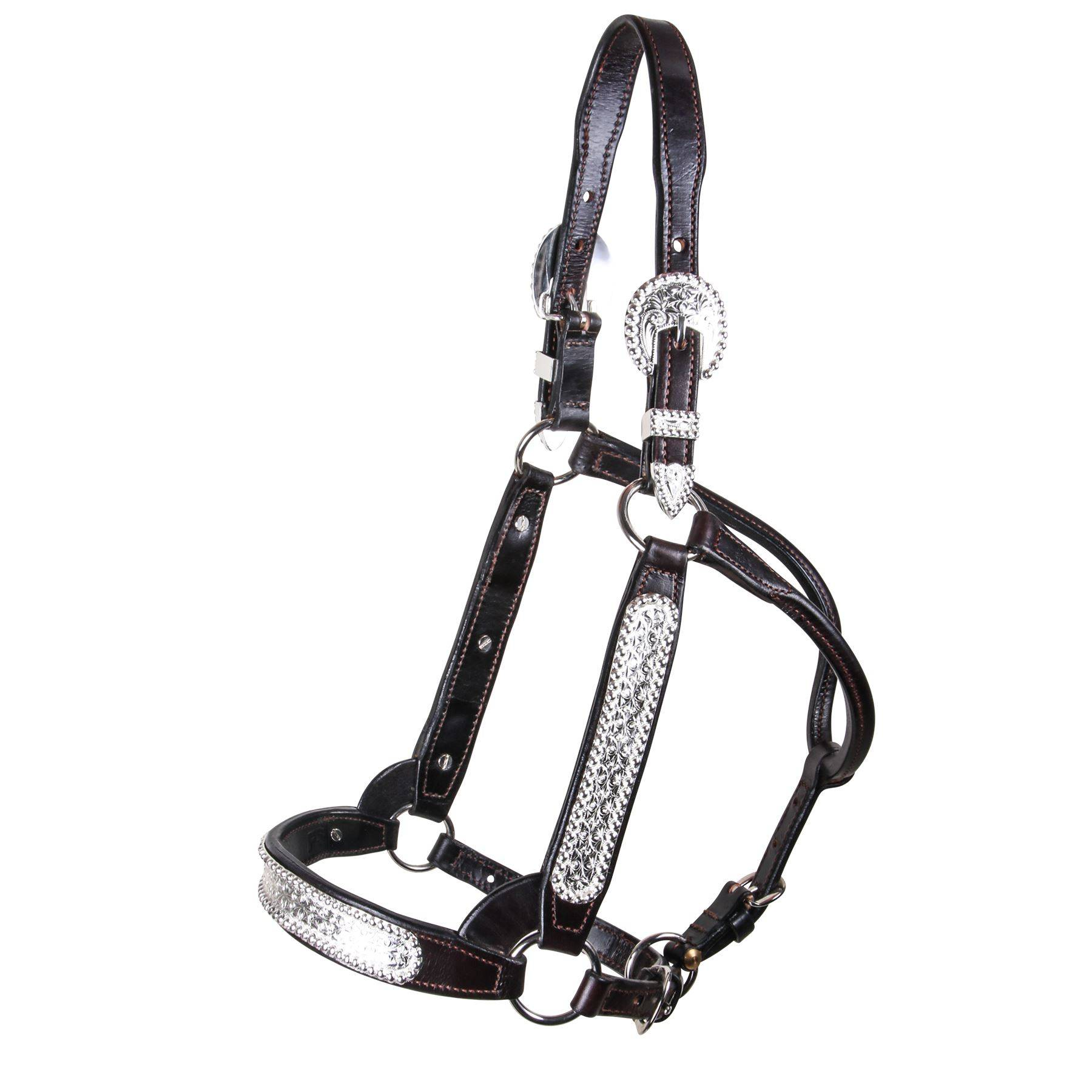 Billy Royal® SP Elite Classic Show Halter
