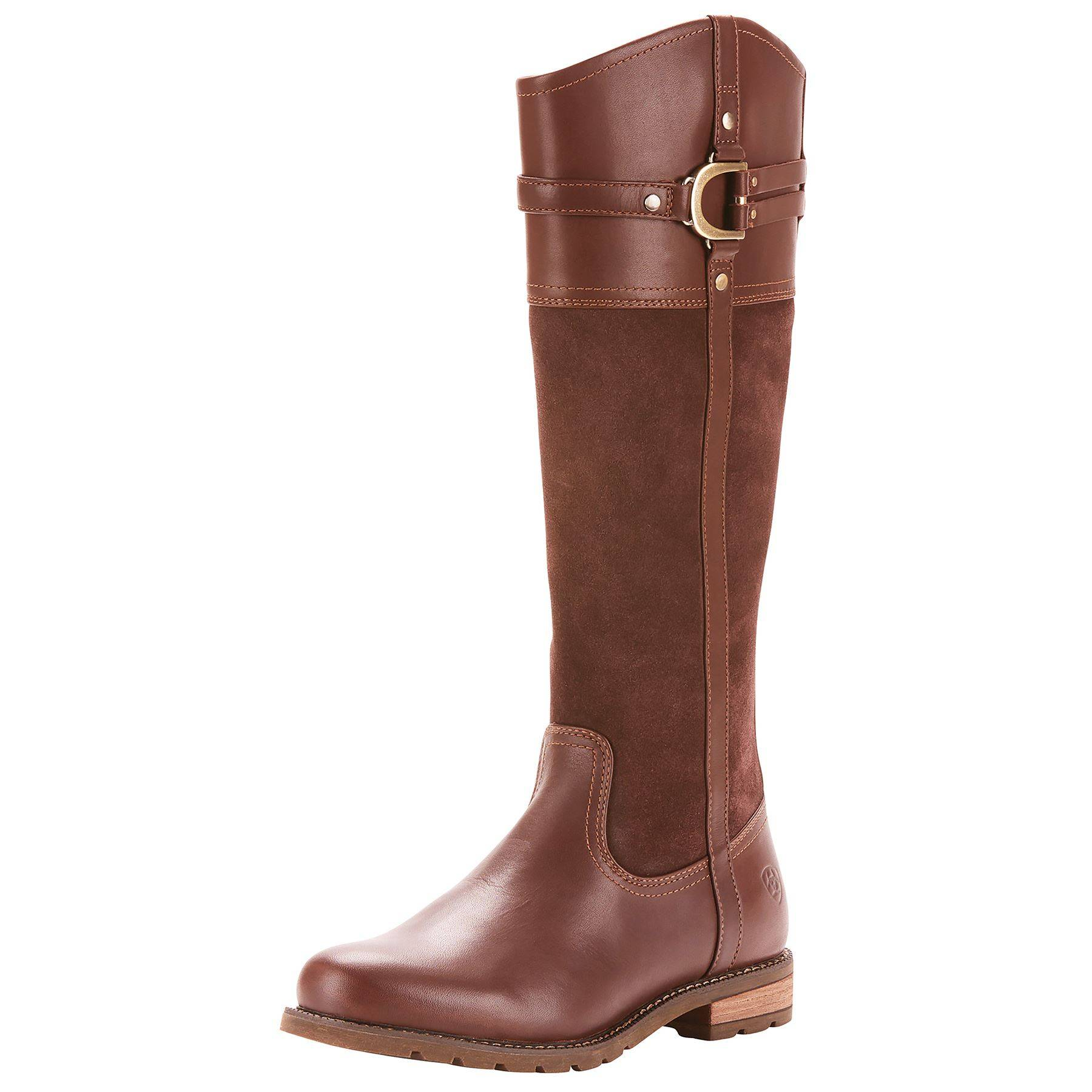 ariat women s loxley h2o tall boots in apparel boots at schneider