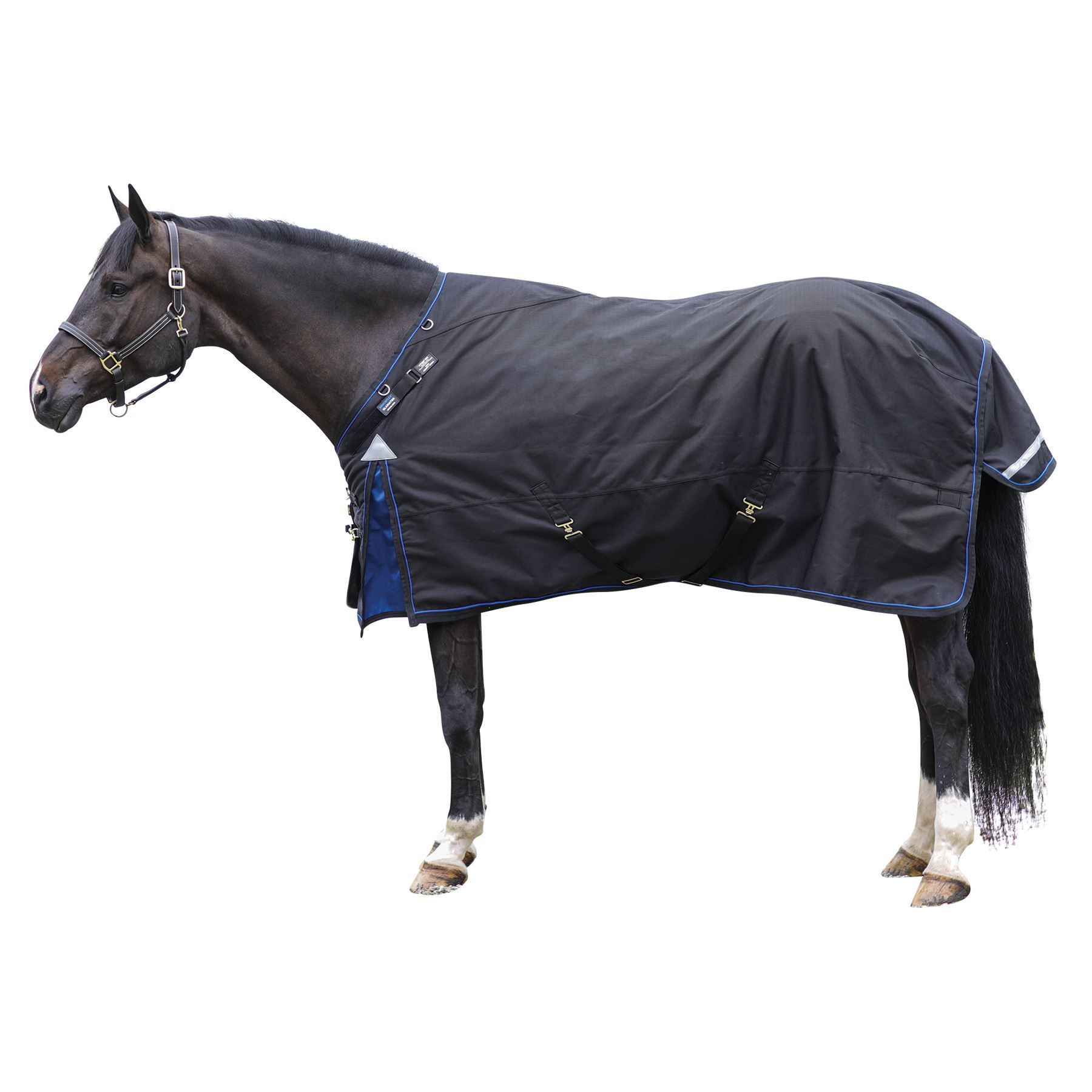 ARMORFlex® Gladiator VTEK® Fit  Heavyweight Turnout Blanket – Surcingle