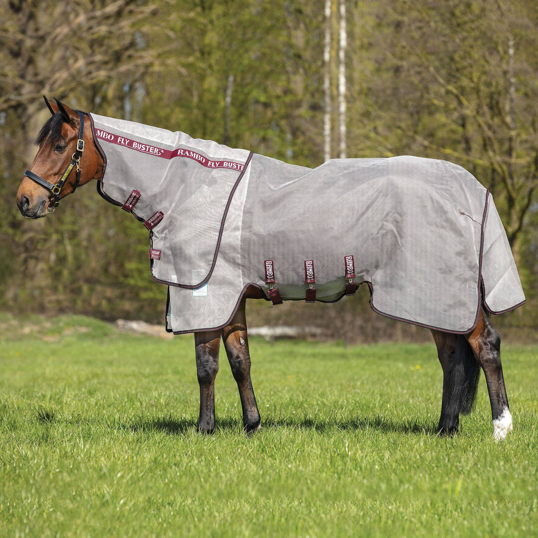Rambo® Flybuster Vamoose Fly Sheet with No-Fly Zone™