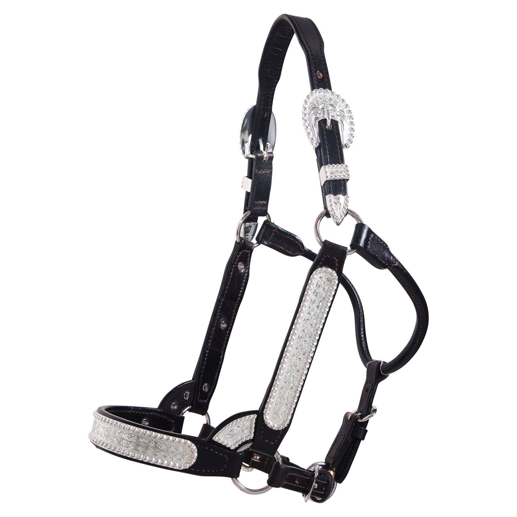 Billy Royal® SP Elite Classic Show Halter – Limited Edition