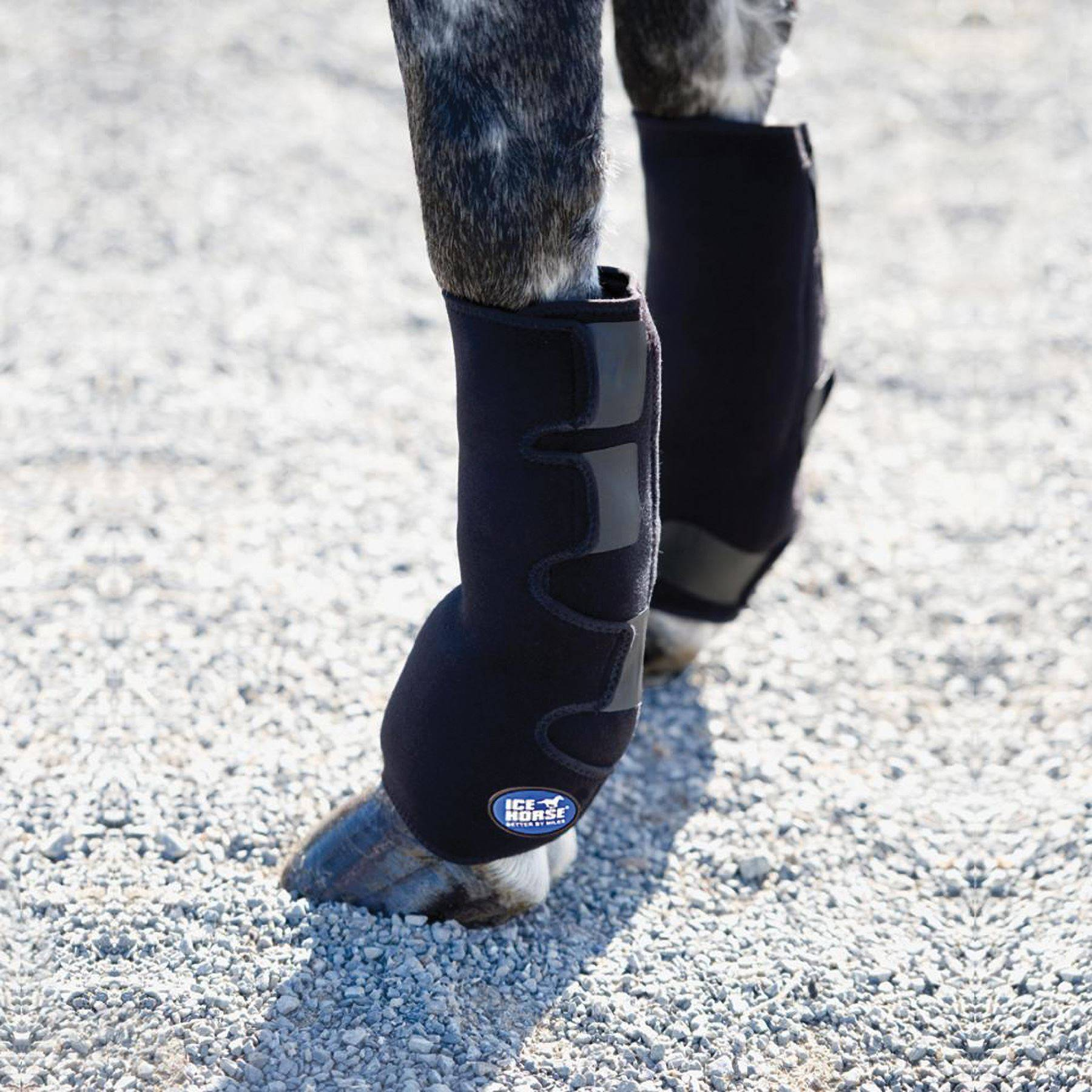 Ice Horse 174 Suspensory Ice Wraps In Horse Boots Wraps At