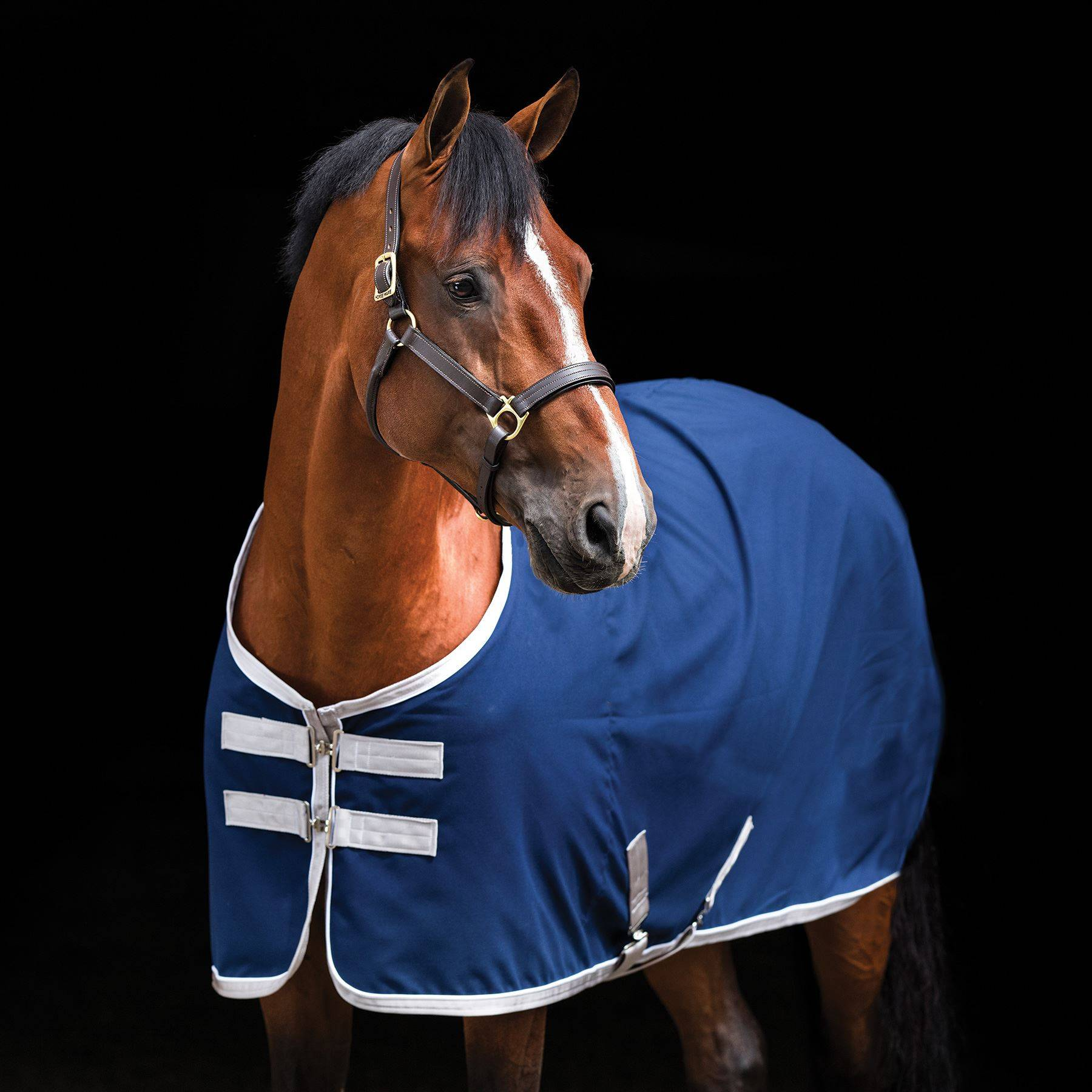 Triple Crown Custom® Santa Anita Stable Sheet with Embroidery