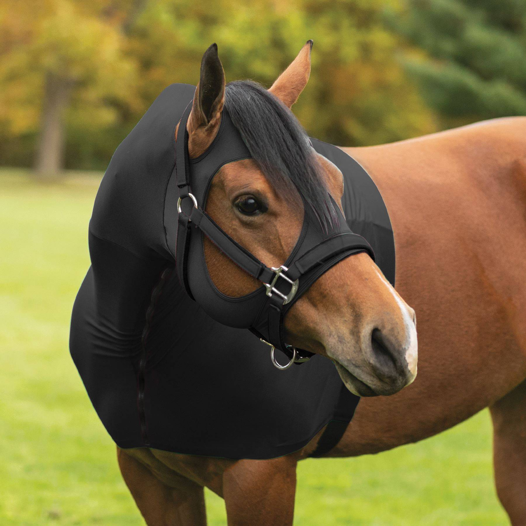 UltraFlex® Forelock Saver Hybrid Lycra/Mesh Zipper Slicker Hood