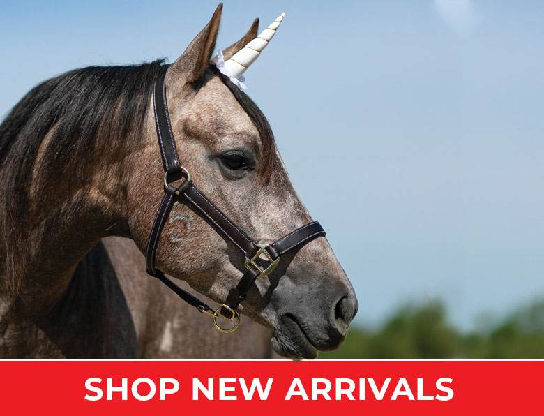 Horse Supplies, Horse Tack and More — Schneiders