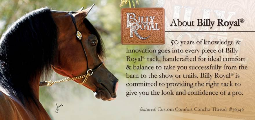 Billy Royal® Arabian Equipment