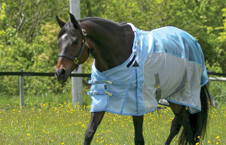 041c8d25a0262c Fly Sheets & Fly Sheet Neck Covers for Horses - Schneiders