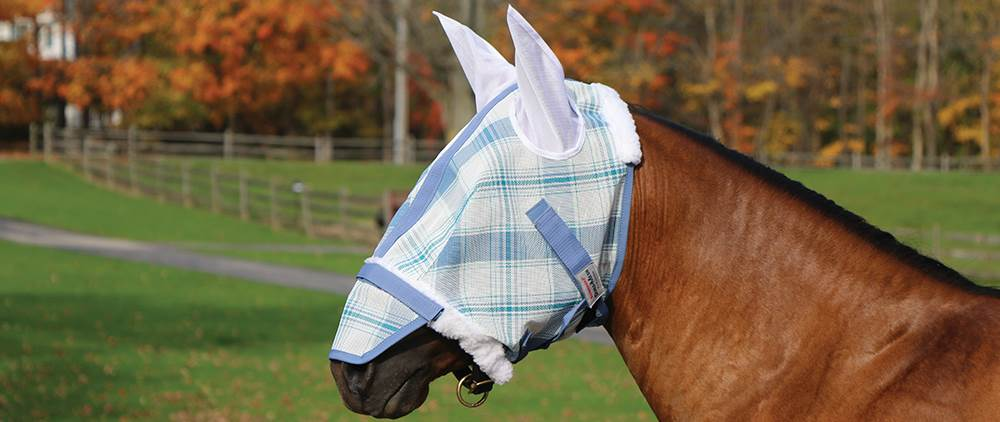 Protect your horses face and eyes from insects