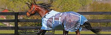 Fly Sheet Fit Guide - How to Choose the Right Blanket to Fit Your Horse