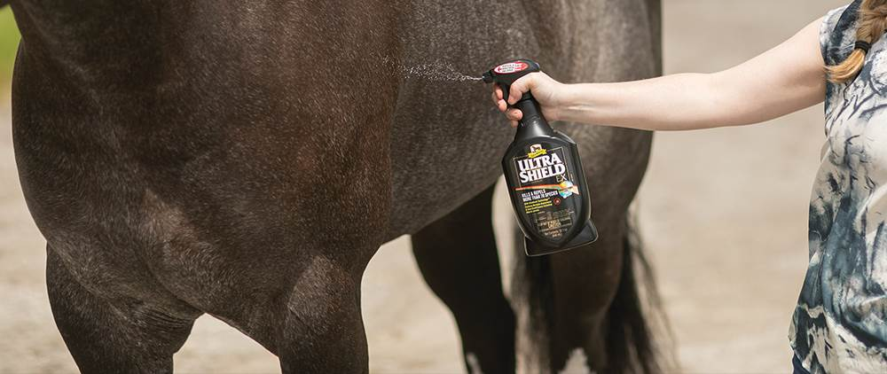 Fly Sprays and other fly repellents for additional fly protection on your horse