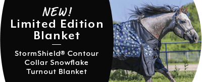 Shop New Snowflake Turnout