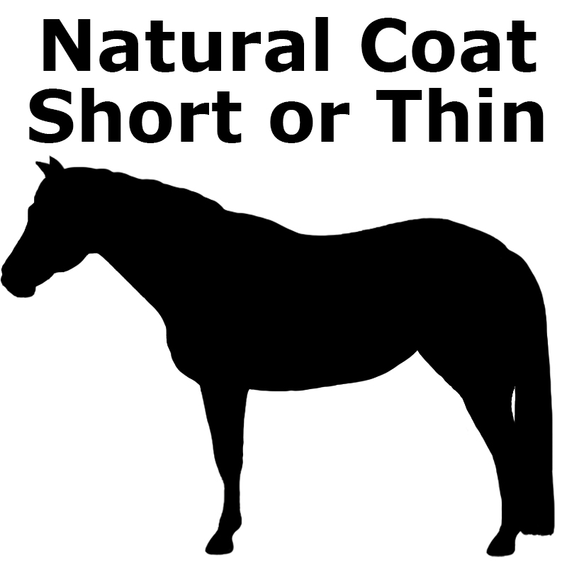 Natural unclipped coat, but thin or short