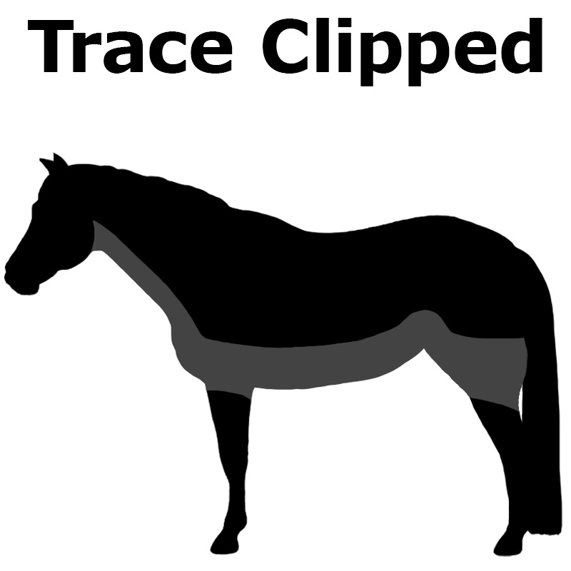 Trace Clipped