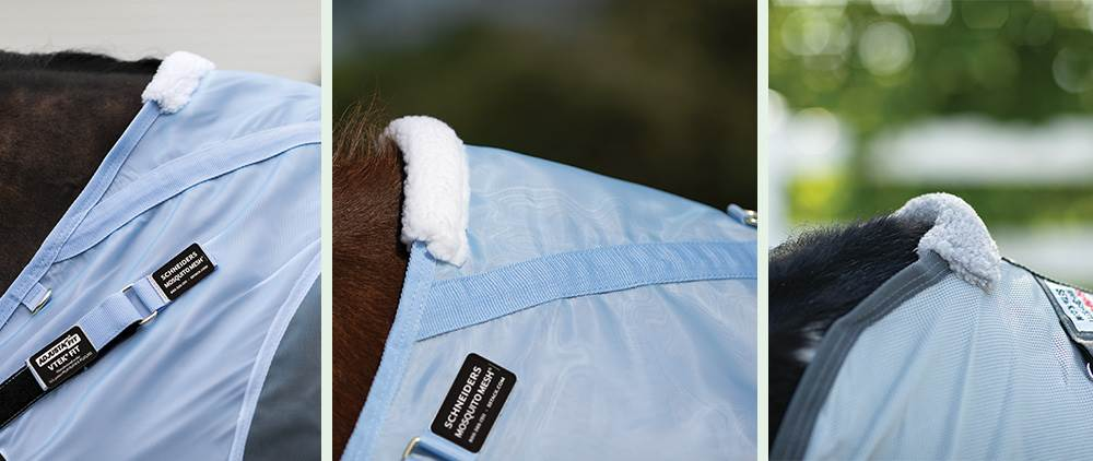 Can My Horse Wear a Fly Sheet in the Summer - Withers