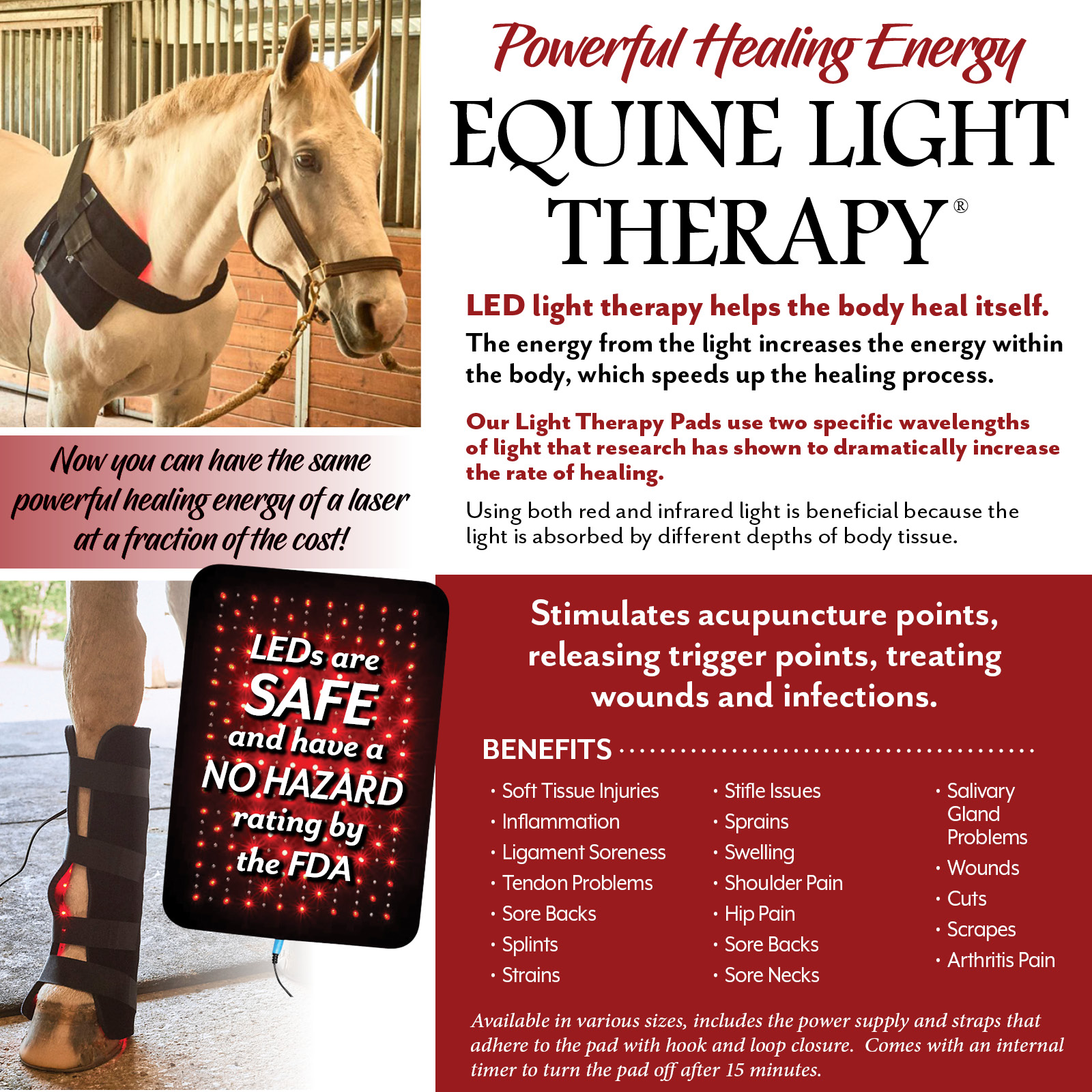 Equine Light Therapy® More Information