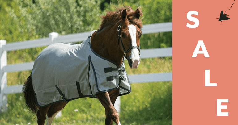 Pony Fly Sheets & AccessoriesFeatued Category