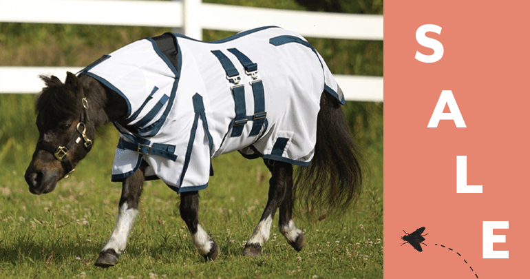 Miniature Horse Fly Sheets & AccessoriesFeatued Category