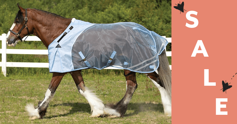 Draft Horse Fly Sheets & AccessoriesFeatued Category