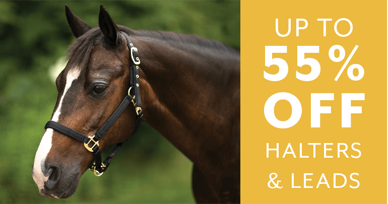 Day 2 - up to 55% off Halters & Lead RopesFeatued Category