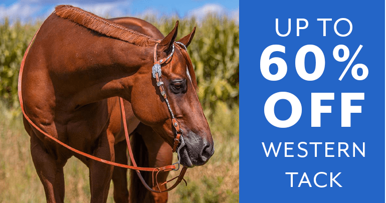 Western & Training Tack - Sale!Featued Category