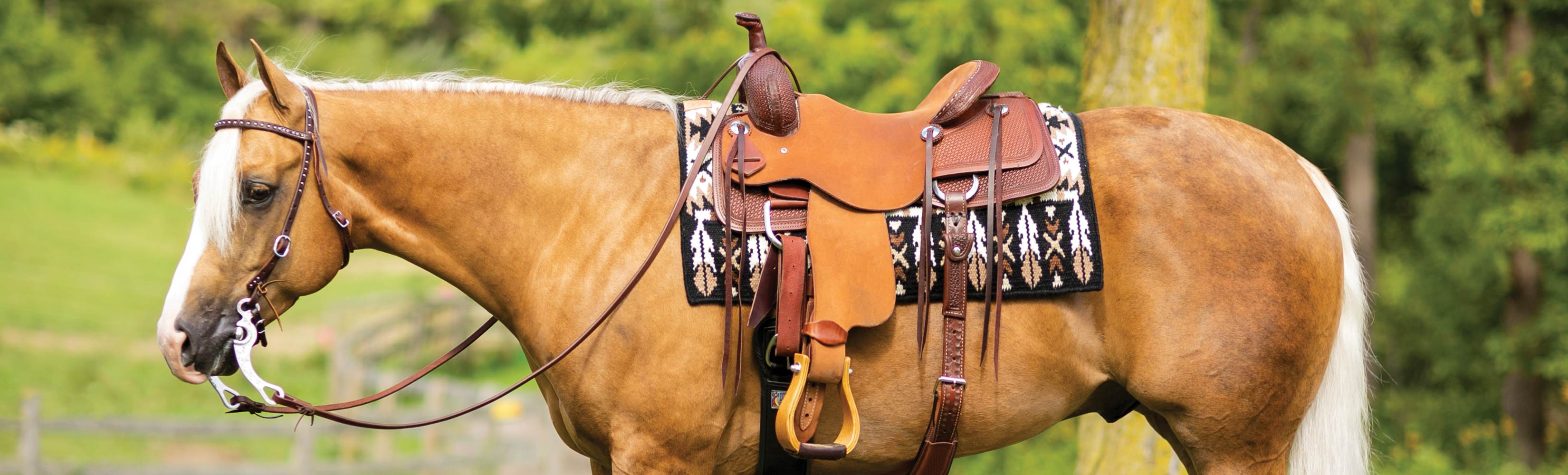 What will be the Western Saddle's main use?