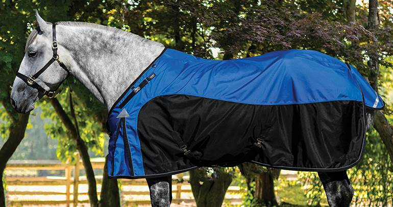 Horse Blankets and Sheets Closeouts