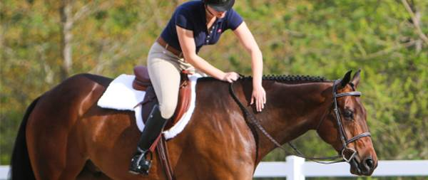 Choosing an Equine College - Your Horse