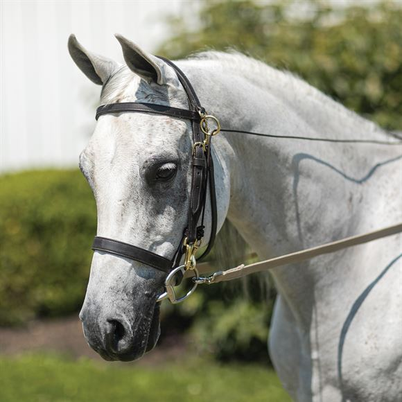 Billy Royal® Arabian Sidecheck Training Bridle