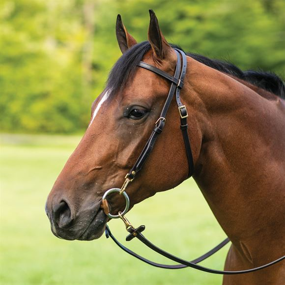 Billy Royal® Work Bridle